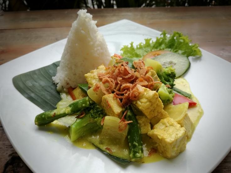 Tofu & tempeh coconut curry (vegan).