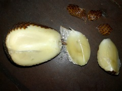 Snake fruit - looks like a garlic, but is has a nice sweet & sour taste.